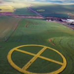 Earth symbol. Canola planted among wheat.