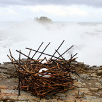 Nest made form stiks as part of sculptures on the Cliff. Hermanus, South africa