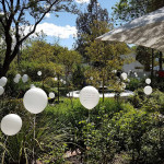 Garden of Poems. Installation of balloons with printed poems as flowers in a garden. Wellington. South Africa